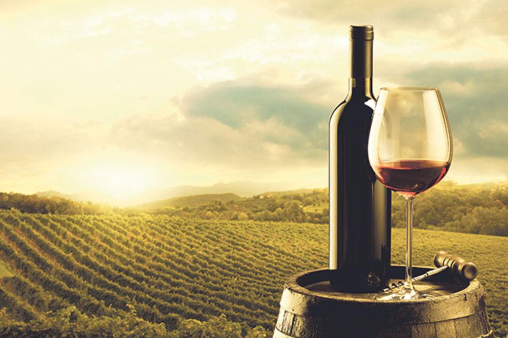 Srpsko vino opija Ruse, mi pijemo tuđe!