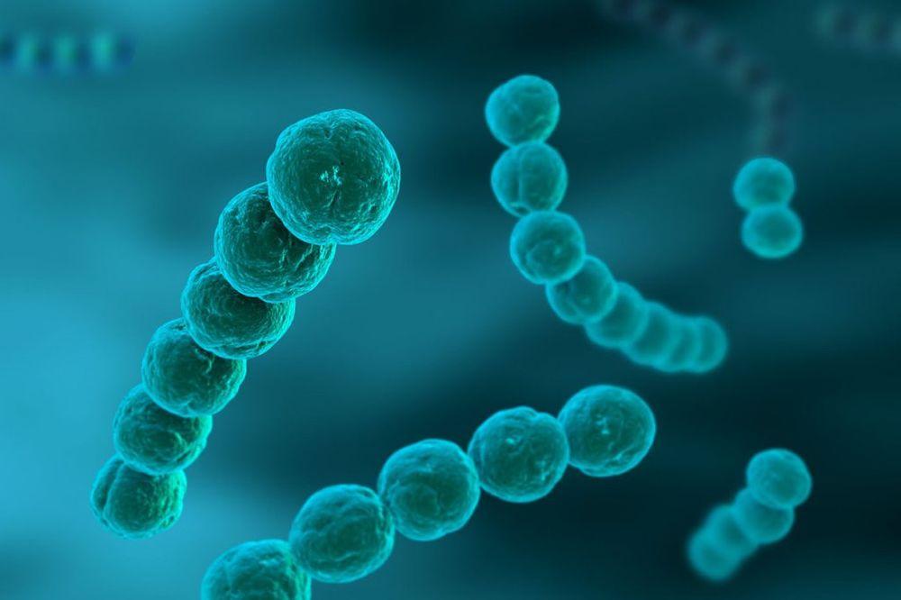 GORA OD KUGE: Svetom se širi novi tip bakterije koja jede ljudsko tkivo