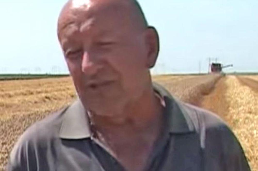 Proizvođači o sortama pšenice i prinosu u 2015
