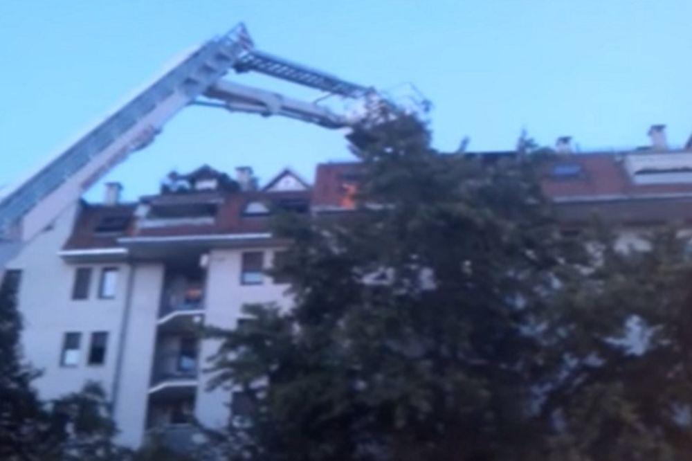 (VIDEO) UZBUDLJIVA AKCIJA NS VATROGASACA: Dovezli i kran da spasu macu s krova stambene zgrade!