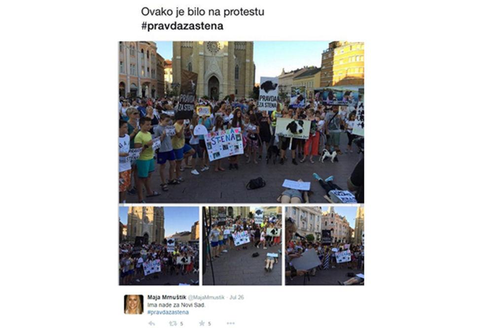 PRAVDA ZA STENA: Na stotine protestovalo u NS zbog eutanazije omiljenog psa lutalice