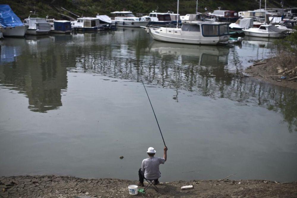 SMEDEREVO: Na Svetskom prvenstvu u ribolovu takmiči se 47 reprezentacija