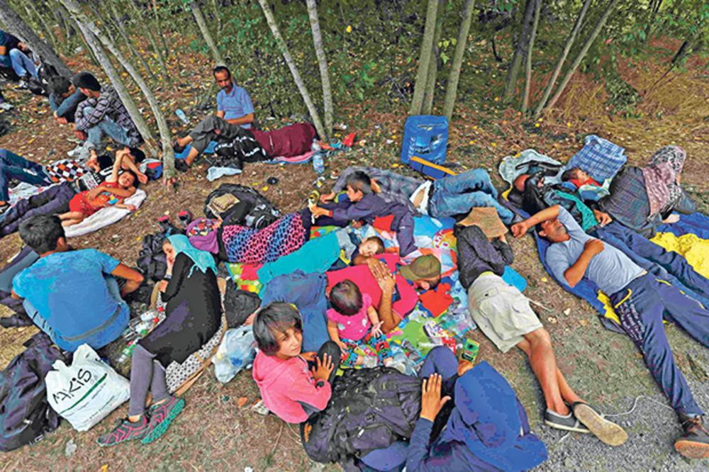 Đurđev: Hitno razdvojiti kriminalce od izbeglica