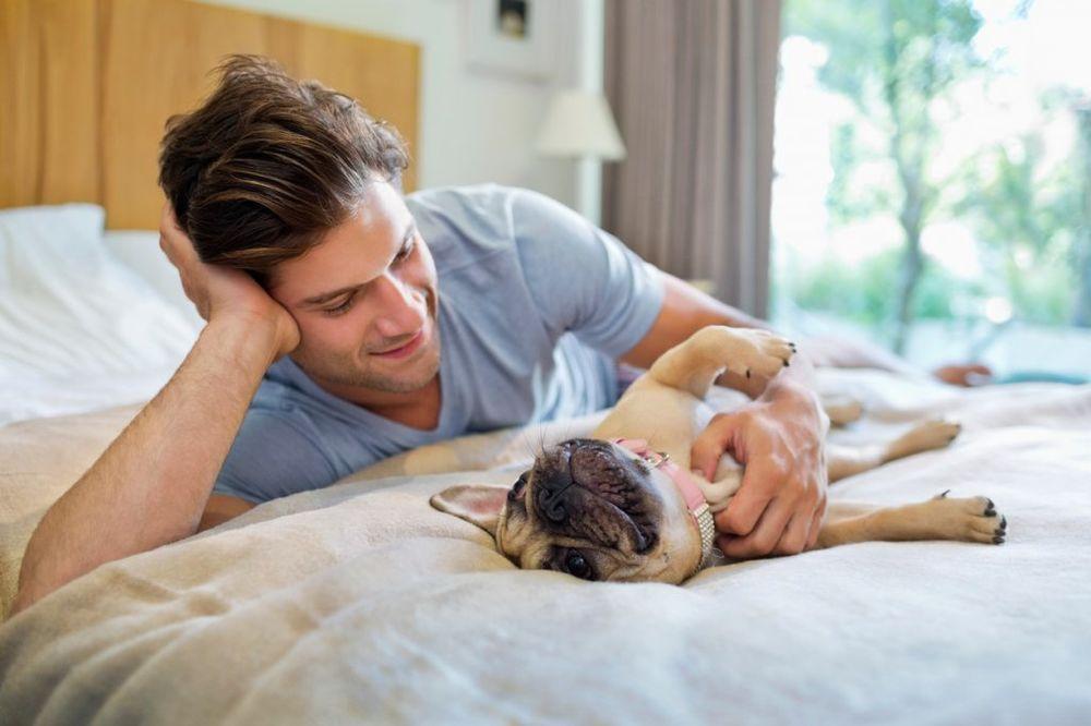 Da li ste se ikad pitali zašto pas trese nogom kad ga češkate? Evo odgovora