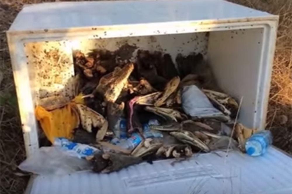 DECA OSTALA U ŠOKU: Otvorili frižider i presekli se kad su videli šta je unutra