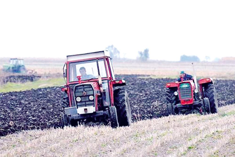 LSV: Ponašanje vlasti i SNS prema poljoprivrednicima je prevršilo svaku meru
