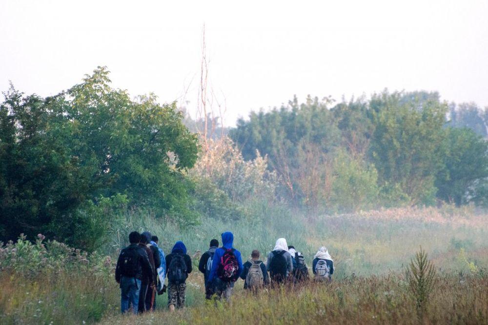 POLICAJCI I VOJNICI OSTALI U ŠOKU: U renou otkrili 50 migranata