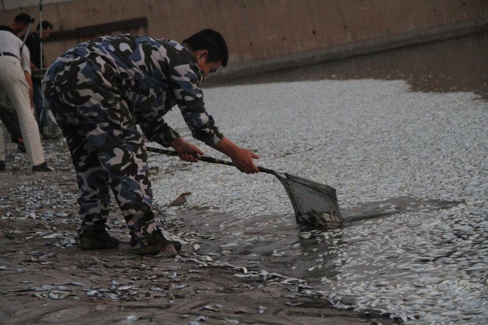PANIKA: U Surdulici je voda za piće otrovana?
