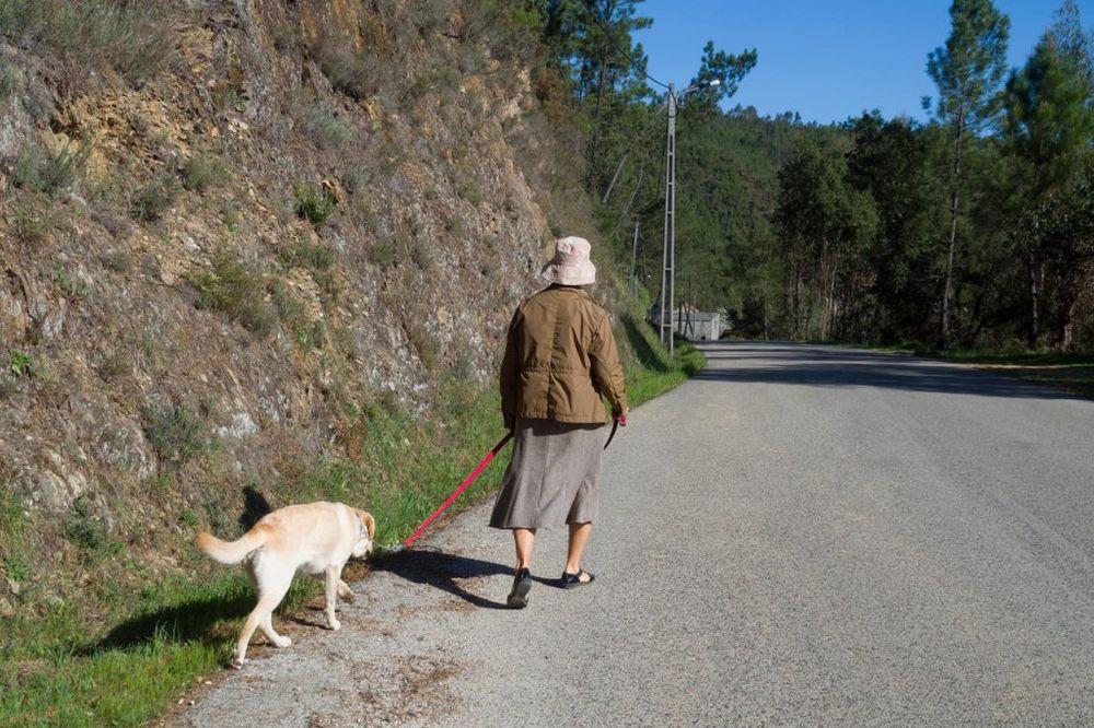NEOBIČAN TESTAMENT: Baka prepisala psu 2.5 miliona dolara iako ima ćerku i unuke