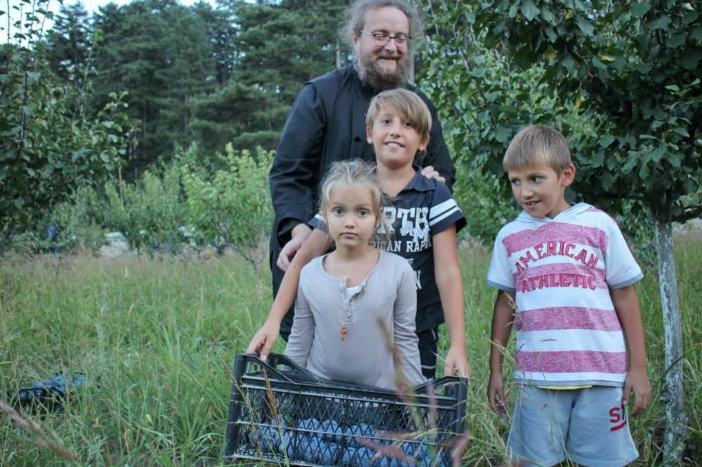 (FOTO) UZDRAVLJE VAM ŠLJIVE BILE: Berba u Visokim Dečanima veselija uz dečju graju!