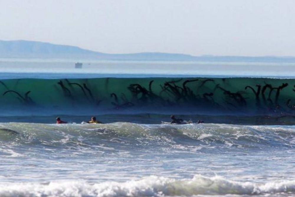 12 ZASTRAŠUJUĆIH FOTOGRAFIJA: Posle ovoga ćete dva puta razmisliti pre nego što uđete u more!