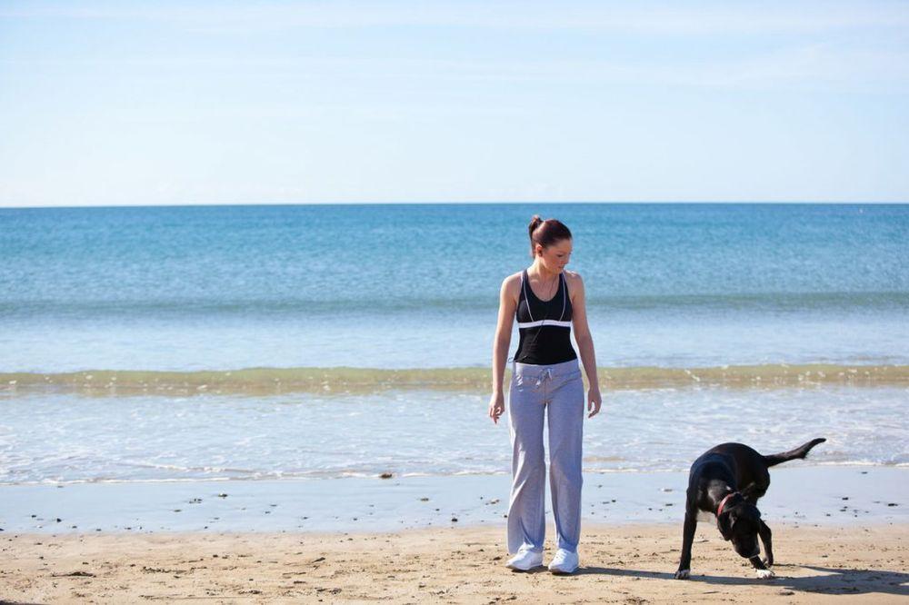 NEVEROVATNA PRIČA SA LETOVANJA: Kako me je pas lutalica spasao od siledžija!