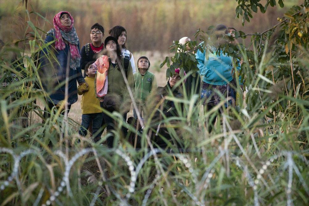 MAĐARSKA ANGAŽUJE GRANIČNE LOVCE: Pojačana zaštita granice sa Srbijom