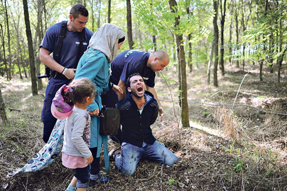 Nisu uspeli... Mađarski graničari hvataju ilegalne migrante