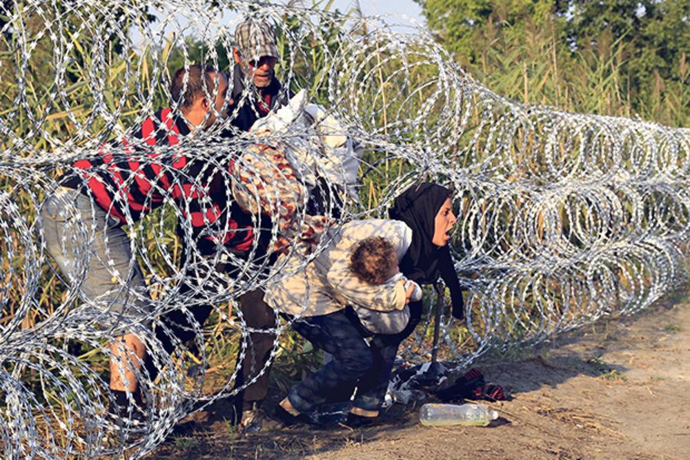 Žica nije prepreka... Ulaze u Mađarsku gde god stignu