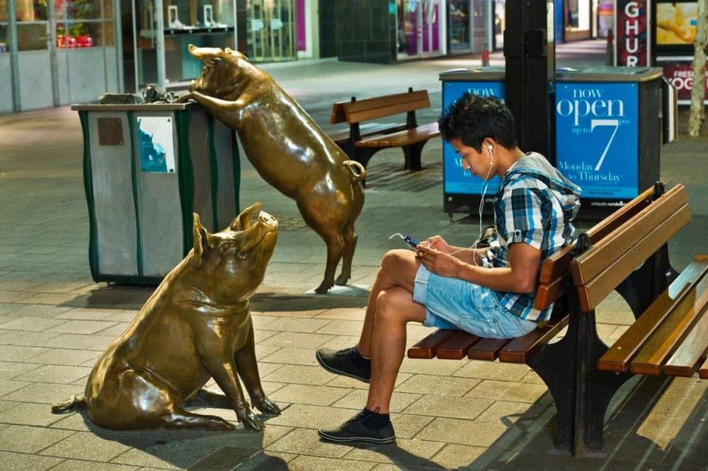 Čudne statue širom sveta - Page 13 Svinje-u-parku-newsweek-foto-profimedia-1441017913-730353