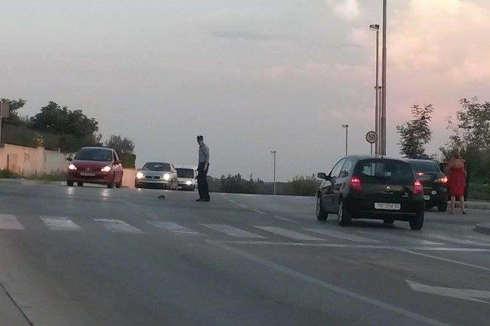 KAKAV KRALJ: Pogledajte zbog čega je ovaj mladi policajac zaustavio saobraćaj!
