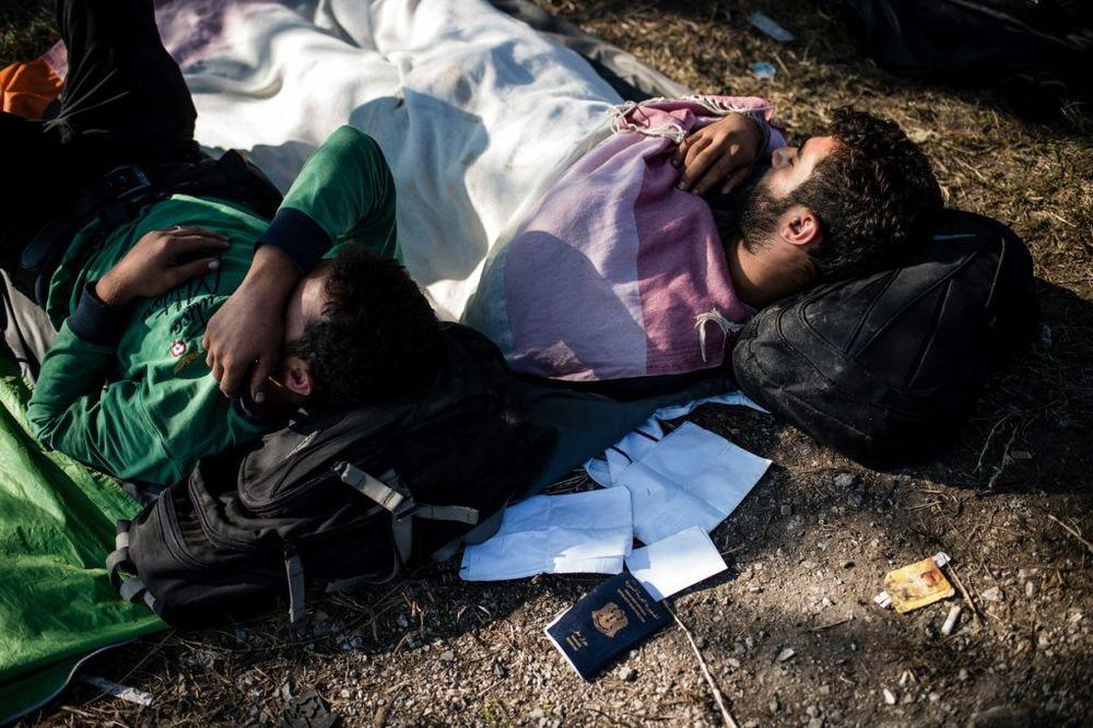 MAJSTOR LAŽNIH PASOŠA: Uhapšen Doktor, falsifikator koji migrantima pravi dokumenta za Evropu