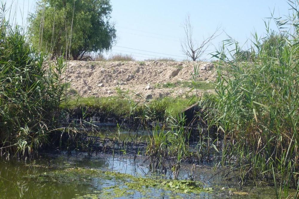 STRAŠNA TRAGEDIJA: Četvorogodišnji dečak se utopio u kanalu u Srbobranu