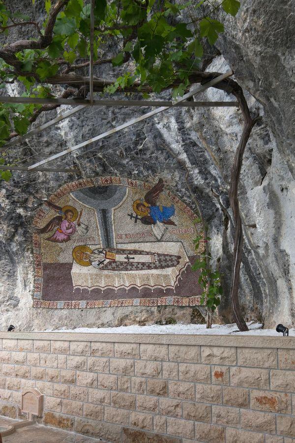 Sveta vinova loza, Foto: Profimedia