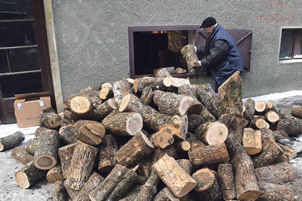 drvo, drva, loženje, grejanje, sirova drva, suva drva, foto beta