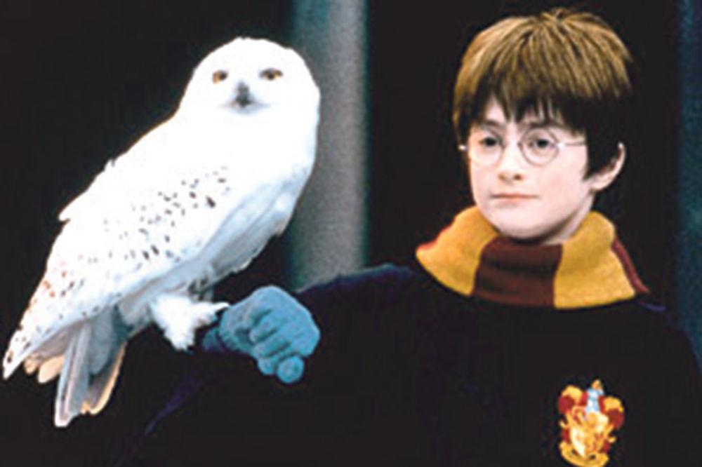 (FOTO) DEČAK KOJI JE PREŽIVEO VIŠE NIJE DEČAK: Pogledajte kako izgleda Hari Poter sa 40 godina