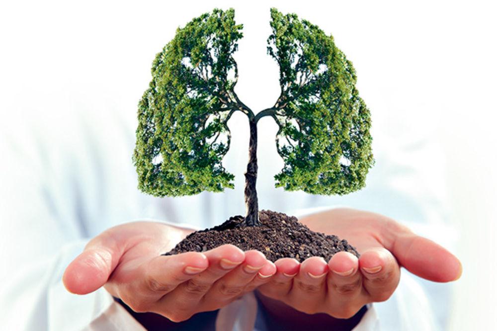 ZAŠTITITE SE OD UPALE PLUĆA: Evo zašto je važno kako dišemo