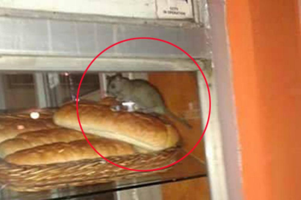 pacov, pekara, foto čitalac Kurira