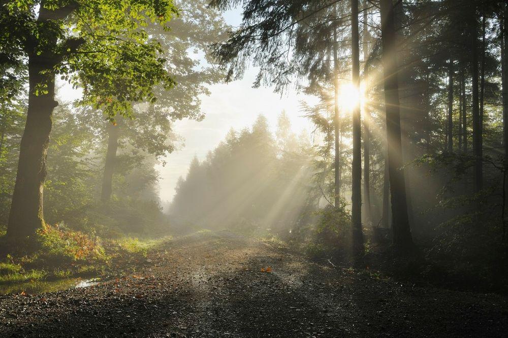 UJUTRU KIŠOBRANI, POPODNE NAOČARE ZA SUNCE: Danas razvedravanje, do 27 stepeni