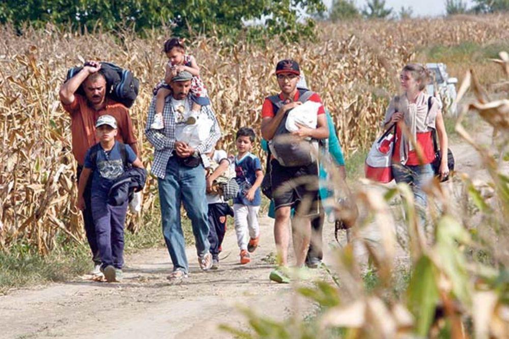 DIVLJI IZBEGLIČKI KAMP NIKAO IZA KELEBIJE: Migranti na ničijoj zemlji čekaju ulazak u Mađarsku