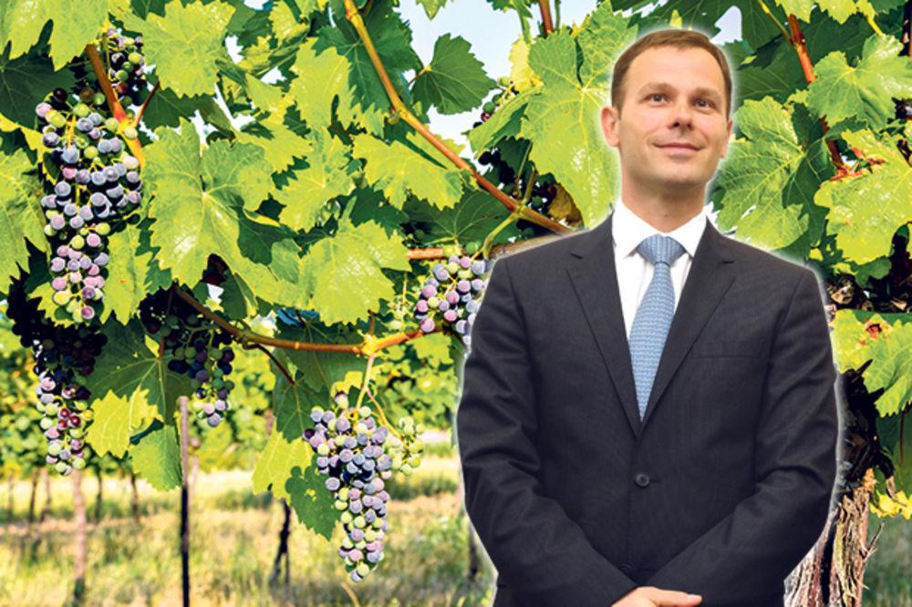 MUTNO: Siniša Mali muljao i s Vršačkim vinogradima