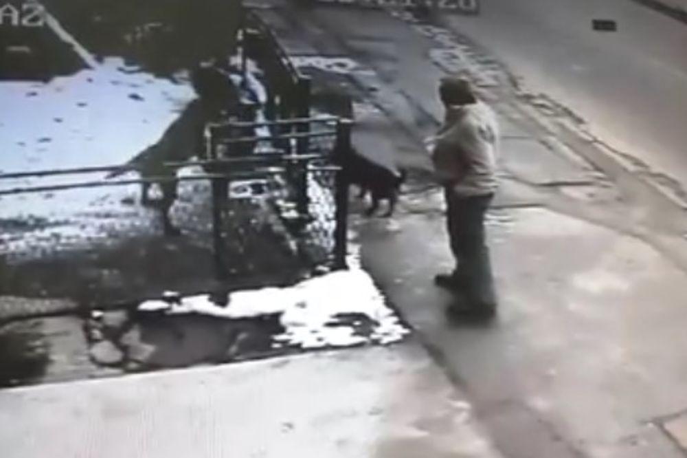 (VIDEO) PREPOZNAJETE LI OSOBU SA SNIMKA: On je pokušao da ukrade psa iz dvorišta, evo i kako