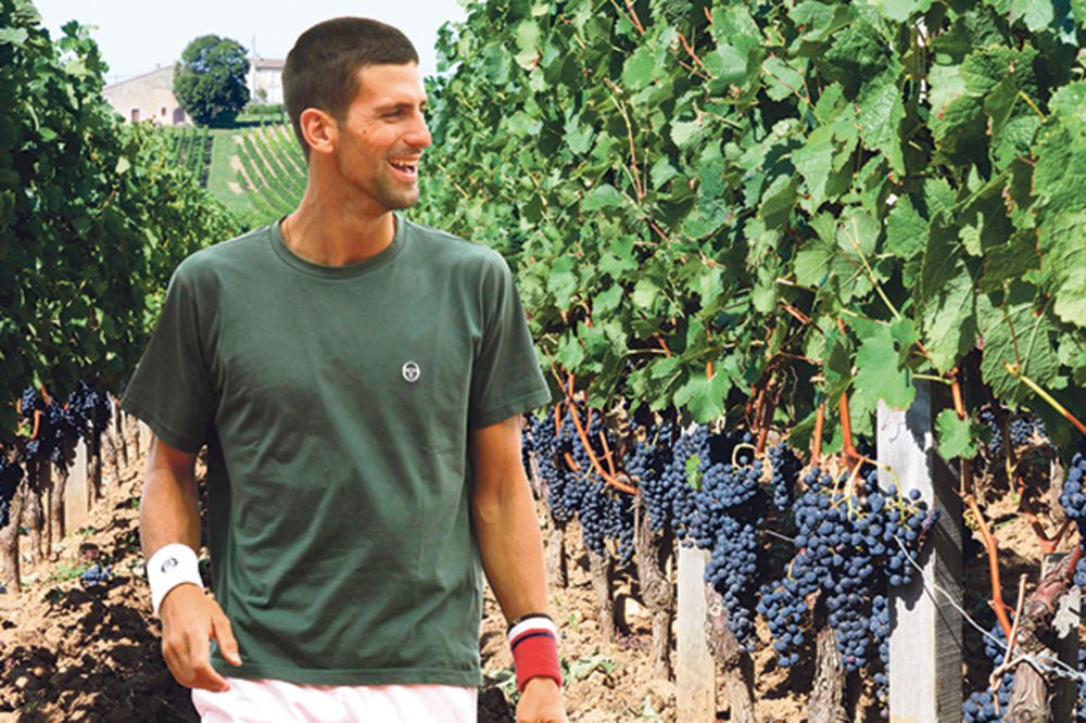 Novak Đoković, Topola, Oplenac, vinogradi, parcele, foto montaža