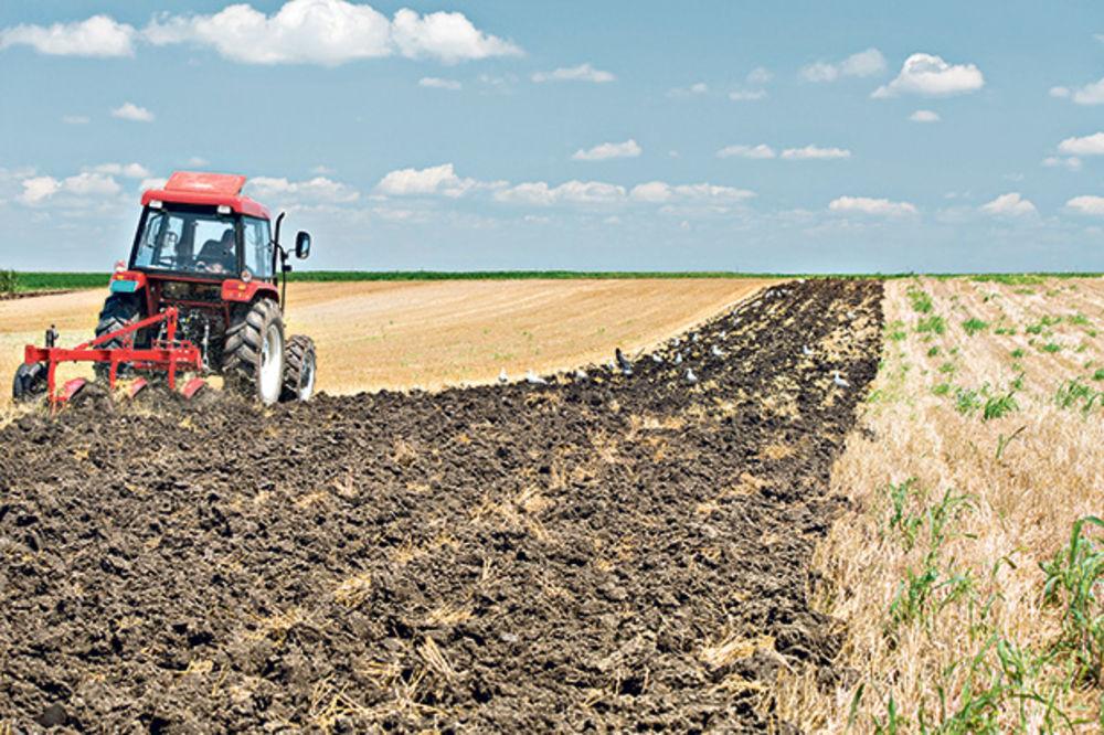 Poljoprivreda, foto Shutterstock