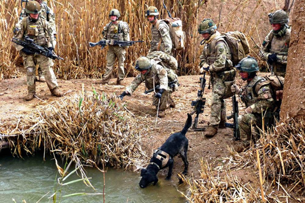 VOJNE VEŽBE: Britanska vojska sprema se za rat NATO i Rusije u istočnoj Evropi