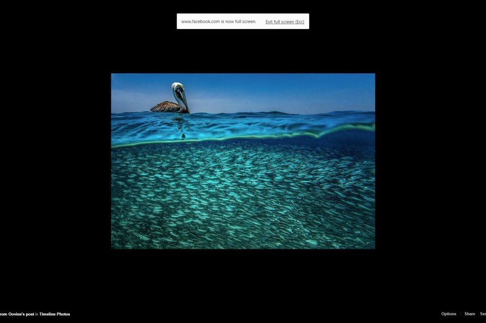 (FOTO) PARALELNI UNIVERZUMI: Fotografije dva sveta koja se kriju iza talasa