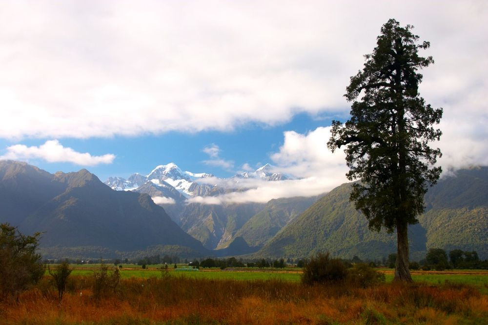 AKO VAM OČAJNIČKI TREBA POSAO: Pravac Novi Zeland, grad Kataintagata traži radnike