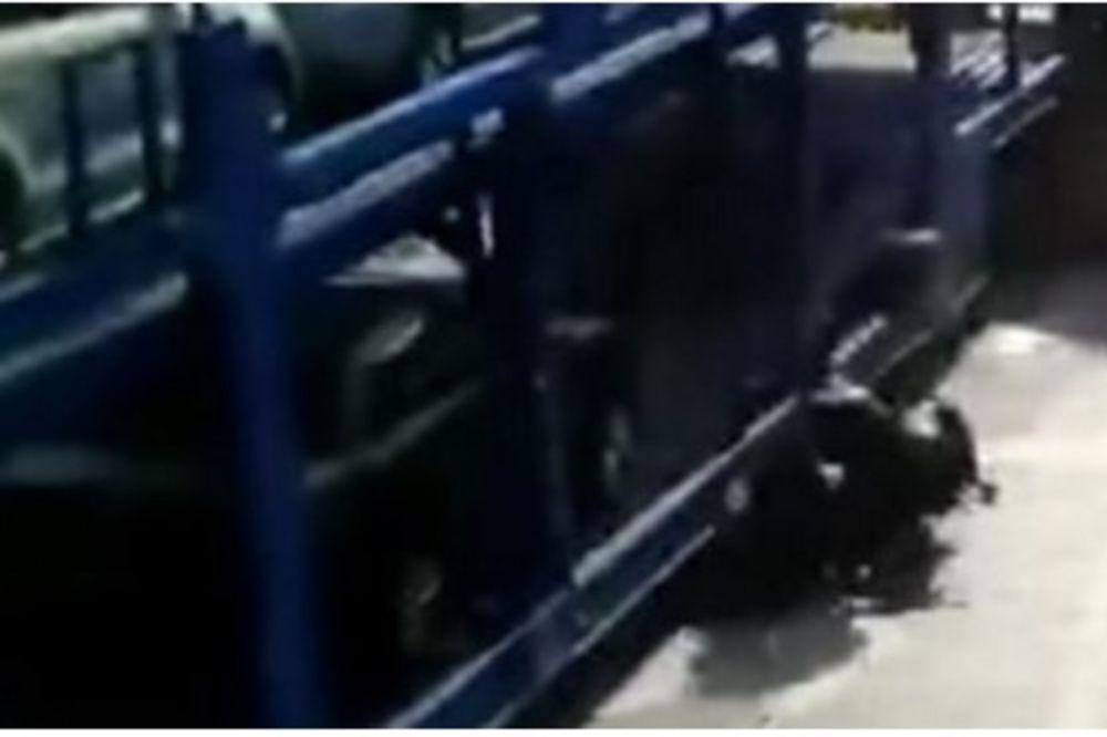 beba, kamion, foto jutjub