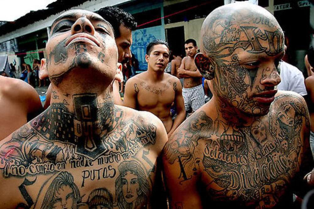 UPOZNAJTE NAJSUROVIJE BANDE U LOS ANĐELESU Seju strah i smrt! 120.000 članova ubija, pljačka, siluje