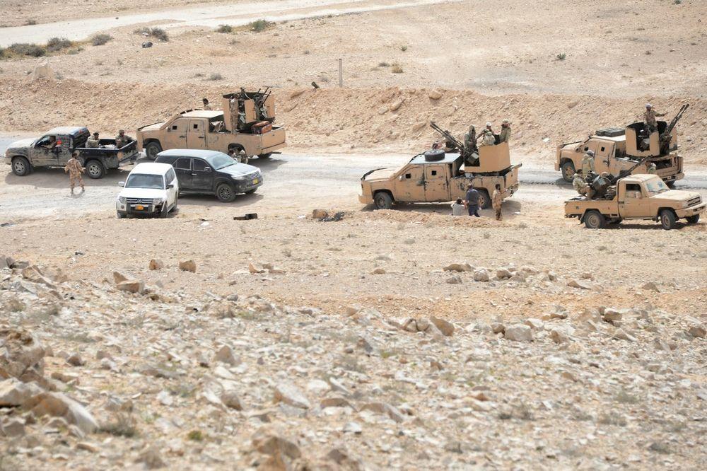 Palmira, Sirija, Pustinjski sokolovi, Foto: Profimedia