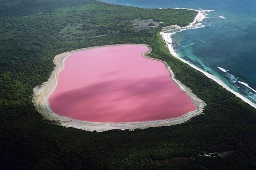 National Geographic, jezero, misterija, roze jezero, Foto Profimedia