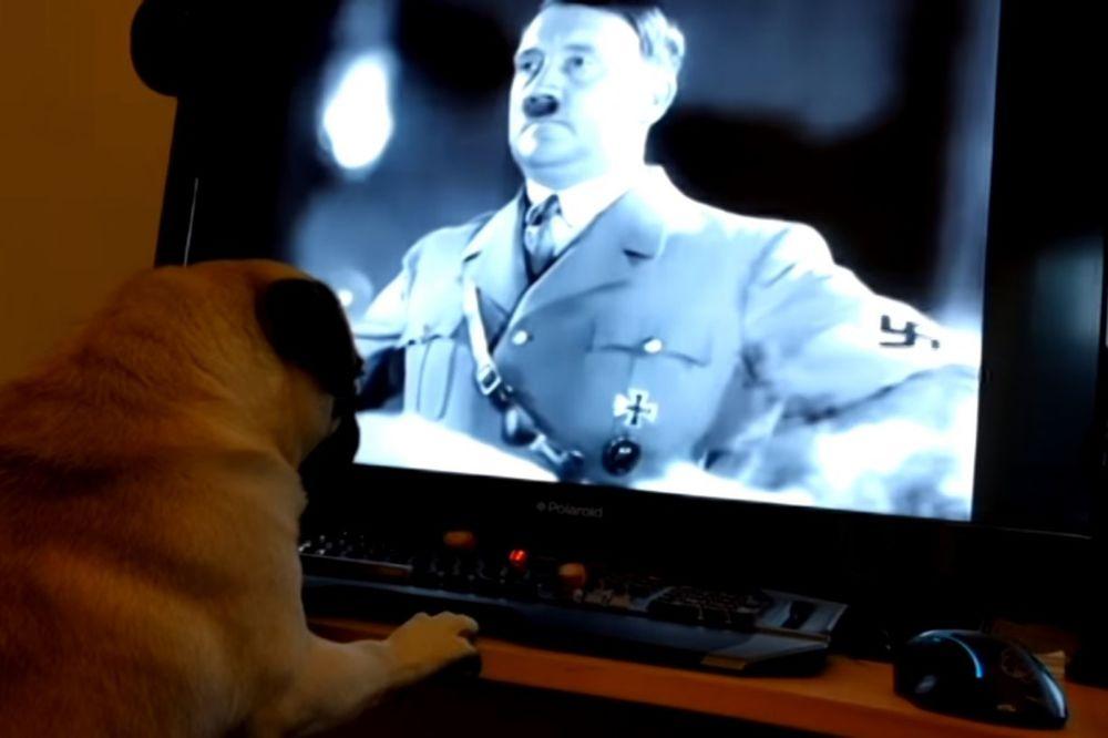 (VIDEO) PAS NACISTA: Naučio je svog ljubimca da imitira Adolfa Hitlera