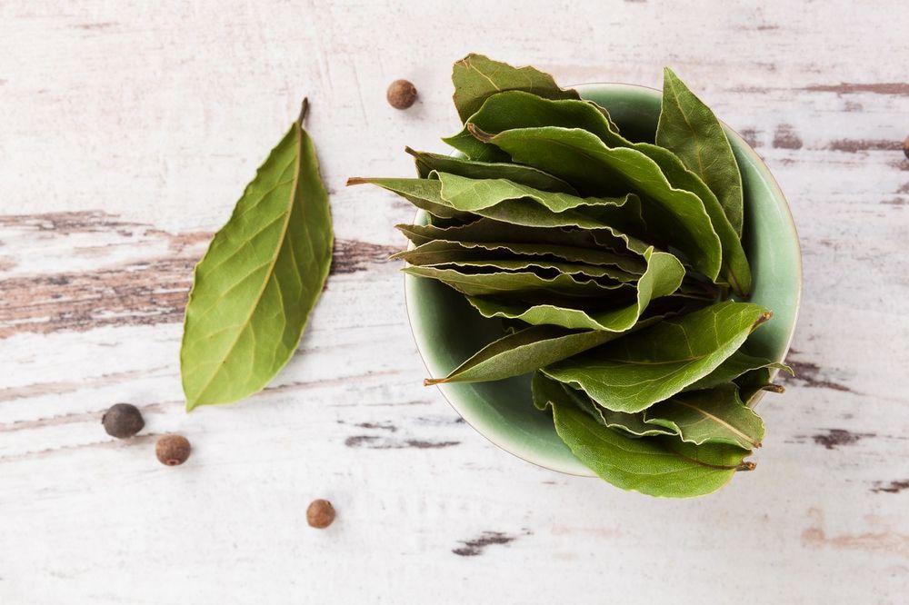 TERAPIJA RUSKOG NAUČNIKA MALAKOVA: Ova čudesna biljka sprečava rak, ali šta se desi kad je zapalite