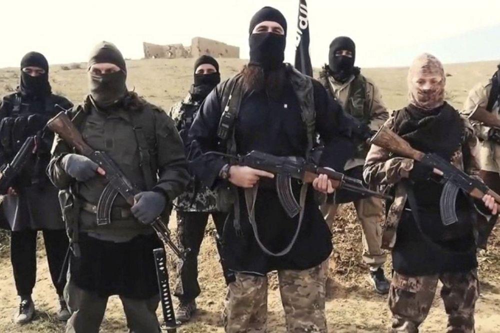 AMERIČKI CENTAR ZA DEMOKRATIJU: BiH je rasadnik džihadista u Evropi!