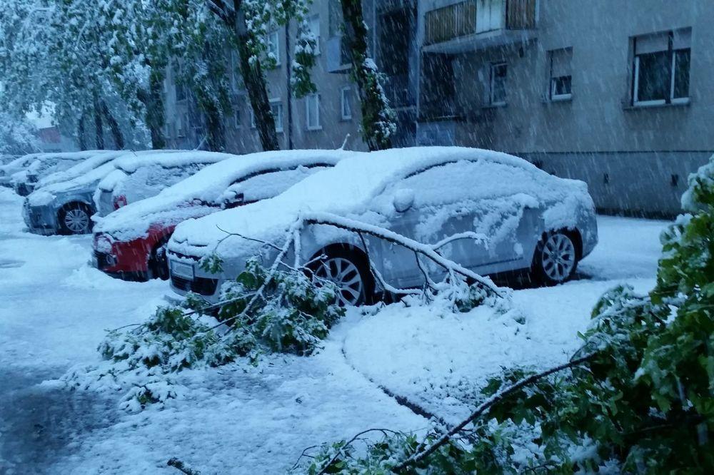 SNEG IZAZVAO HAOS U SLOVENIJI: Ljubljana bez struje, saobraćaj u kolapsu!