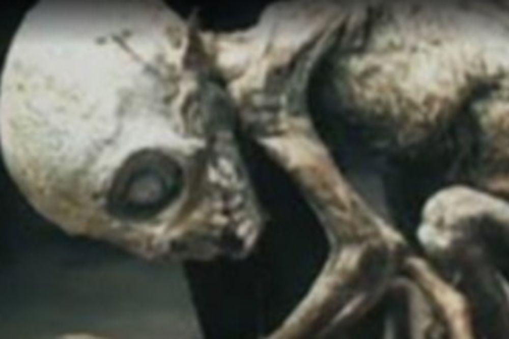 ČOVEK JE PROVERAO KLOPKE ZA MIŠEVE U ŠTALI: Onda je otkrio stvorenje koje je došlo pravo iz pakla!