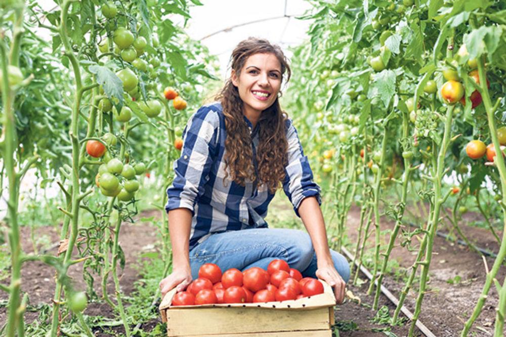 Više para za proizvodnju organske hrane