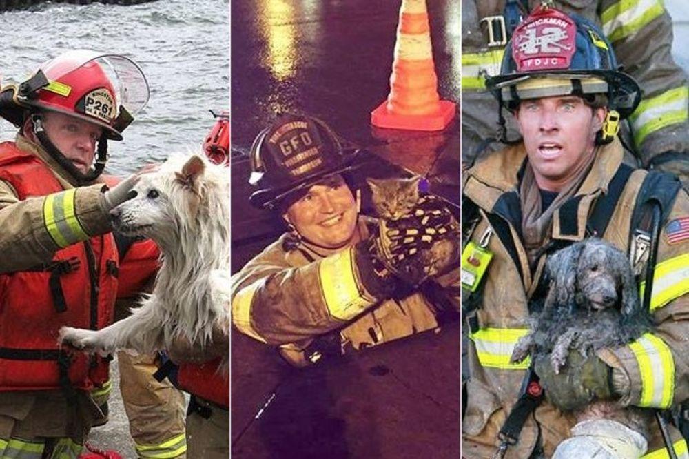 (FOTO) DAN NAJHRABRIJIH MUŠKARACA I ŽENA: Oni su rizikovali svoje živote da bi spasil životinje