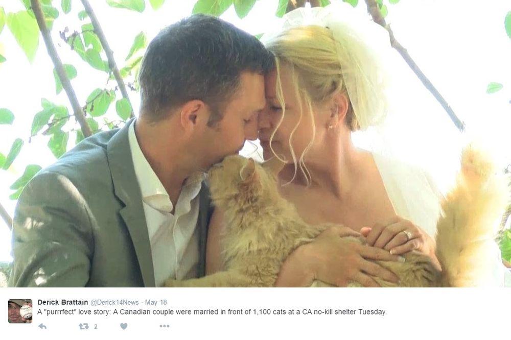 NEOBIČNA CEREMONIJA: Pozvali su više od 1.000 gostiju na proslavu, ovakvo venčanje još niste videli!
