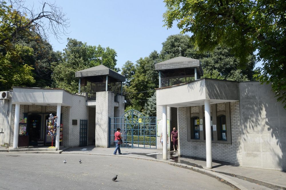 DRAMA U VRTU DOBRE NADE: Dečaka udarila struja u Beo zoo-vrtu